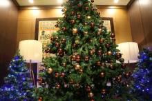 ☆゚ .  メリークリスマス! ゚ .☆