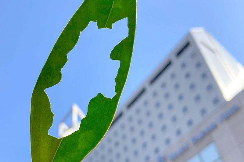 ホテルブエナビスタは長野県民限定「県民支えあい 県民宿泊割」の対象施設です