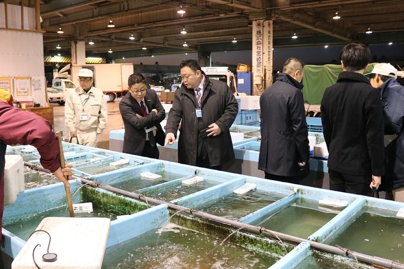 未明から活気に溢れる宮崎中央卸売市場の水産魚市場